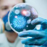 Какие основные пути передачи цитомегаловируса среди людей?